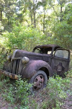 "An old ""Car Graveyard"" south of Tallahassee, Florida. Lots of beautiful, though rusty, oldtimers. Abandoned Cars, Abandoned Places, Abandoned Vehicles, Photo Post Mortem, Rust In Peace, Old Pickup, Rusty Cars, Vintage Trucks, Classic Trucks"