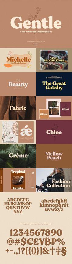 Serif Typeface, Sans Serif Fonts, Photoshop Illustrator, Adobe Photoshop, Vinyl Record Store, Modern Serif Fonts, Font Packs, Wedding Fonts, Tropical Design