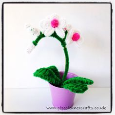 pipe cleaner orchid, explanations on the website www.pipecleanercrafts.co.uk Pipe Cleaner Flowers, Pipe Cleaner Crafts, Pipe Cleaners, Bottle Art, Diy Videos, Orchids, Planter Pots, Projects To Try, Pretty