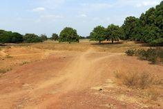 Burkina Faso - Reisen - Savanne