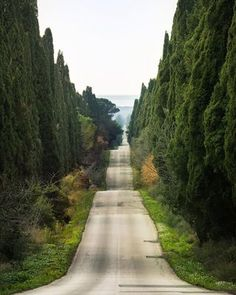 Travel photos from Italy. Rolling hills in Tuscany, Italy photo via cajun Beautiful Roads, Beautiful World, Beautiful Beautiful, Places To Travel, Places To See, Travel Destinations, Travel Stuff, Places Around The World, Around The Worlds