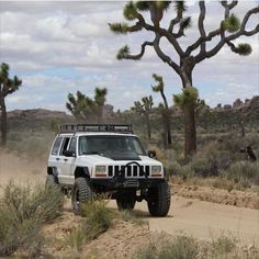 Jeep owner: @mark_popcorn…                              …