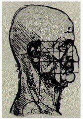 Leonardo da Vinci's profile drawing showing the divine proportion of the face (golden rectangles)
