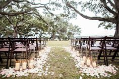 Cypress Trees Plantation Edisto, SC  Eco-friendly rose petals are available at Flyboy Naturals Rose Petals.  Non-staining & not slippery!  Super affordable too! www.flyboynaturals.com