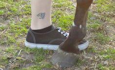 Ik heb een Tattoo voor me paardje laten zetten omdat hij zoveel voor me betekend.