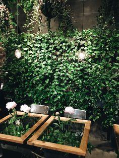 Aoyama Flower Market Teahouse – Tokyo | Hello Sunshine Outdoor Cafe, Outdoor Restaurant, Cafe Interior Design, Cafe Design, Flower Cafe, Greens Restaurant, Cafe Exterior, Green Bar, Garden Cafe