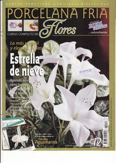 CURSO PRACTICO DE MODELADO EN PORCELANA FRIA BIENVENIDAS-FLORES -2005 N°12 - sandra mejia - Álbumes web de Picasa