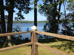 """Tea & the cabin"" (in NW Wisconsin)  Lovely post by http://teatra.de member @Fay"