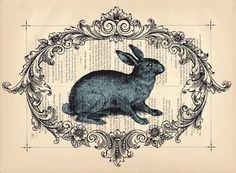 Vintage bun illustration
