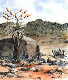 Aloes and Rocks Watercolours, Watercolor Paintings, Rocks, Wildlife, African, Birds, Water Colors, Bird, Stone