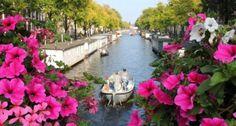 7 cose insolite da fare ad Amsterdam
