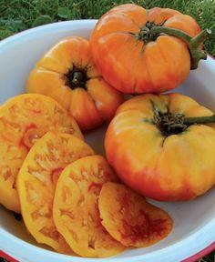 Sure-to-please varieties that should be growing in your kitchen garden