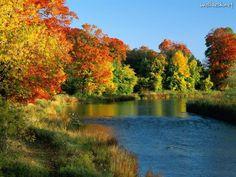 Outono...Ontário