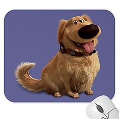 FRIENDLY: Doug from Disney's Up is friendly to whomever he meets even if they are not so nice to him.