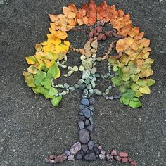 """botanicalwandersMade this one from stones and cottonwood leaves collected from along the Skokomish River.some of my family helped me to seek out certain colors, so its rightly titled """"family tree"""" Autumn Crafts, Nature Crafts, Land Art, Art Haus, Ephemeral Art, In Natura, Nature Activities, Leaf Crafts, Gardens"""