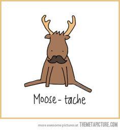 Moose-tache!  @Cheyenne Blackburn