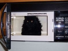 """""""It's real hot inside this TV!"""""""