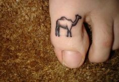 In reality, many things can contribute to the occurrence of camel toes.