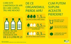 Apa în dieta zilnică #Infografica Boarding Pass, Nutrition, Biology