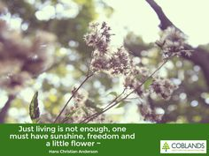 """""""Just living is not enough, one must have sunshine, freedom and a little flower"""" - Hans Anderson"""