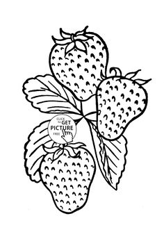 Tasty Strawberry Fruit Coloring Page For Kids Fruits Pages Printables Free