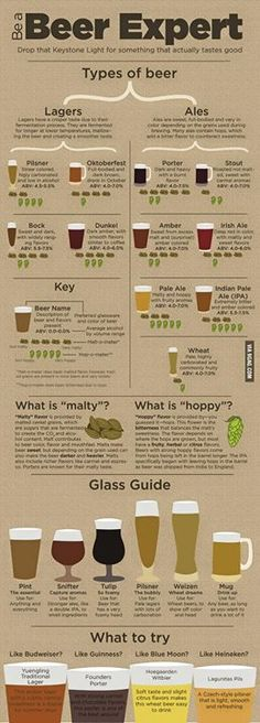 Infographic: How to be a beer expert.