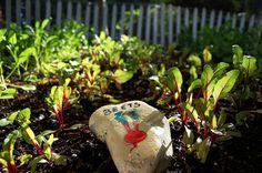 stone garden markers for our children's veggie garden Garden Markers, Garden Stones, Fun Activities, Veggies, Backyard, How To Get, Eat, Blog, Kids