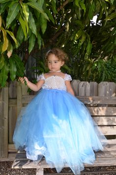 Cinderella Dress perfect for halloween    $60.00    https://www.facebook.com/photo.php?fbid=265112893610241=a.265112886943575.64524.189065084548356=1_count=5=nf