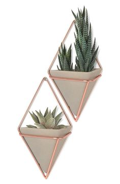 Update any space with these chic pyramidal wall vessels featuring copper hardware that can house plants, office items or other knick knacks.