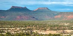 Named for two tall buttes that resemble the top of a bear's head, the creation of Bears Ears National Monument made history honoring Native American tribes Utah, Meanwhile In America, Forest Road, Bear Ears, Native American Tribes, Native Americans, National Treasure, Monument Valley, Nativity
