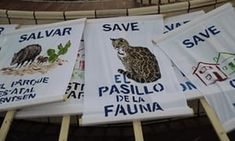 Posters show support for Santa Ana national wildlife refuge, home to 400-plus species of birds and several endangered wildcats, at a rally in Mission, Texas, in August 2017.