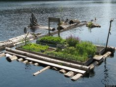Not only does this retired couple live on a floating cabin, but they also have a floating GARDEN?!  GTFO.