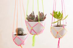 How to Use Neon Straws and String to Make Easy DIY Hanging Planters via Brit + Co Straw Activities, Diy Hanging Planter, Planter Ideas, Hanging Succulents, Hanging Rope, Diy Planters, Craft Projects, Projects To Try, Pot Hanger