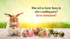 Funny Easter Jokes: Check our Latest and Awesome Collection of Funny Easter Jokes For Adults, Kids, Friends & Family, Funny Easter Religious Jokes, Funny Easter Bunny Jokes Easter Bunny Jokes, Funny Easter Jokes, Religious Jokes, Easter Religious, Easter Speeches, Holy Friday, Easter Festival, Resurrection Day, Friday Memes