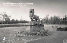 PARC ZOOLOGIQUE DE PARIS - Les animaux sauvages s'installent à Paris