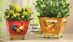 Country Rooster Planter Pots - Set of 2