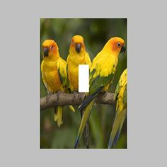 BIRD- SINGLE Light Switch Plate / Cover - Brought to you by Avarsha.com