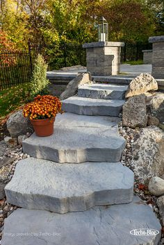 Outdoor steps and stairs maya step marches extérieurs 00955 7633 Garden Pool, Terrace Garden, Backyard Patio, Backyard Landscaping, Landscaping Ideas, Rustic Garden Decor, Rustic Gardens, Design Patio, Garden Design