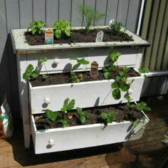 Old dresser converted into a planter