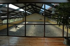 Ok not really living space . . . except i might live there alot . . . and not really outside.  But heck if we had the indoor arena attached to the house you could easily fine me :)
