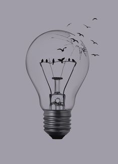 Vintage Clip Art Old Fashioned Light Bulb The Graphics . The Dark Side Of Process Improvement Quotiss. Drawing A Cartoon Light Bulb. Art Drawings Beautiful, Cool Art Drawings, Pencil Art Drawings, Bird Drawings, Art Drawings Sketches, Drawing Ideas, Horse Drawings, Drawing Art, Animal Drawings