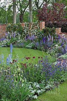 Blue Border Garden Campanula Iris Delphinium Anchusa by valarie Small Gardens, Outdoor Gardens, Garden Cottage, Garden Beds, Iris Garden, Purple Garden, English Cottage Gardens, Rockery Garden, Garden Shade