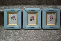 Vintage Botanical prints/ set of 3/ Framed by UpcycledCottageDecor