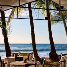 Lunch Special. #costarica #tamarindo #beach #happierthanabillionaire #puravida #SaltLife #love