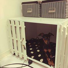 セリア/IKEA/モノトーン/犬小屋/犬小屋DIY/カラボリメイク…などのインテリア実例 - 2015-12-16 12:46:32 | RoomClip(ルームクリップ)
