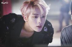 Jin || WINGS_Photoshoot W
