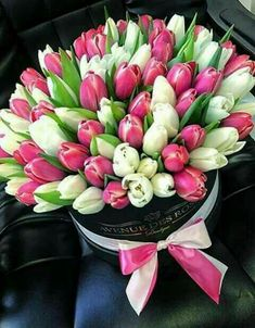 All beautiful ladies with women's day! I wish you happiness, love and eternal youth in your heart and soul🤗🌹⚘🌷🌼🌻💐🥀💖🙋♀️ Purple Tulips, Tulips Flowers, All Flowers, Planting Flowers, Beautiful Flowers, Beautiful Ladies, Happy Birthday Rose, Corporate Flowers, Gardens