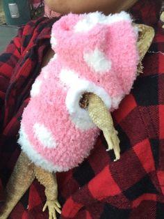 WHITE POLKADOT LRG PINK SLEEVELESS SNUGABLE HOODIE SHIRT 4 FEMALE BEARDED DRAGON  | eBay