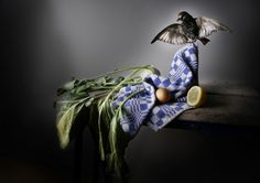Banquet Still Life Series by Louise te Poele | InspireFirst