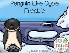Penguin Life Cycle Freebie Hi again! This is Susan from First Grade Friendly… First Grade Science, Kindergarten Science, Tacky The Penguin, Penguin Life, Penguin Craft, Sequencing Activities, Sequencing Cards, Penguins And Polar Bears, Baby Penguins